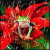 Аватар для kinenya